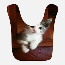 Adorable Calico Kitten.. Bib