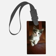 Adorable Calico Kitten Luggage Tag