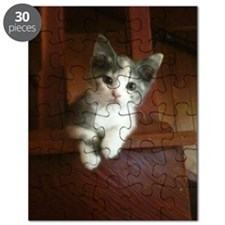 Adorable Calico Kitten Puzzle