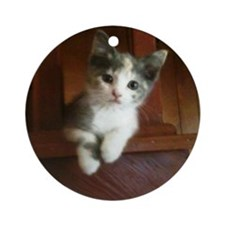 Adorable Calico Kitten Round Ornament