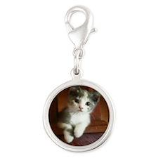 Adorable Calico Kitten Silver Round Charm