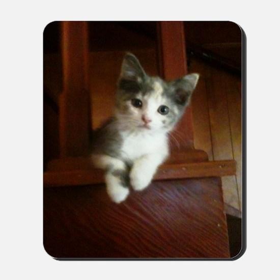Adorable Calico Kitten Mousepad