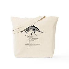 Stegosaurus Bones Tote Bag