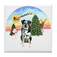 R-TakeOff-CatahoulaLeopardDog Tile Coaster