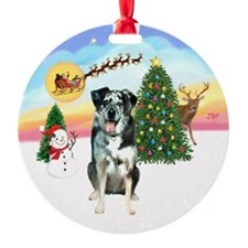 R-TakeOff-CatahoulaLeopardDog Ornament