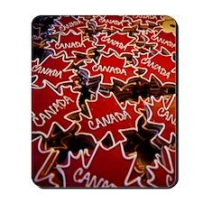 Natinal symbol of Canda Mousepad