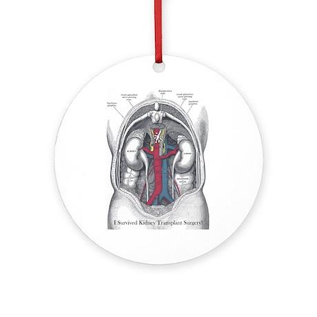 I Survived Kidney Transplant Ornament (Round)