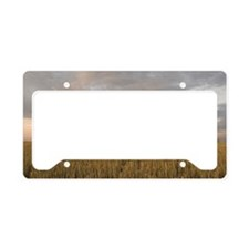 Hay bales in field at sunset License Plate Holder