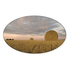 Hay bales in field at sunset Decal