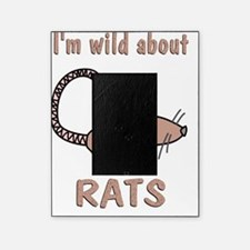 Wild About Rats Picture Frame