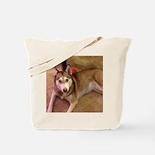 Rue  Litro Logo Tote Bag