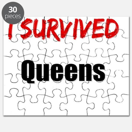 I survived QUEENS Puzzle