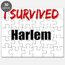 I survived HARLEM Puzzle