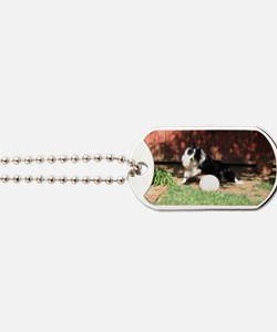 Sheltie with ball Dog Tags