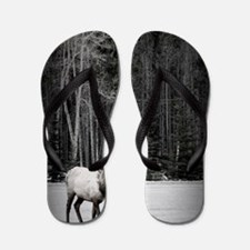 elk with birch tree Flip Flops