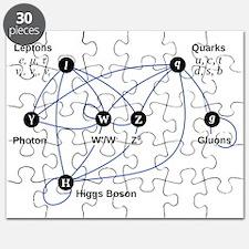 Higgs Boson L Puzzle