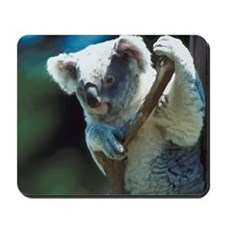 Cute Koala Bear Mousepad