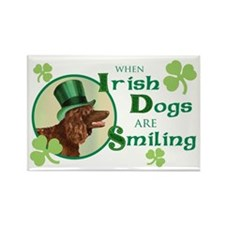 St. Patrick Irish Water Spaniel Rectangle Magnet