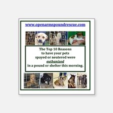 "OPEN ARMS POUND RESCUE SPAY Square Sticker 3"" x 3"""