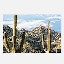 Duo Saguaros Postcards (Package of 8)