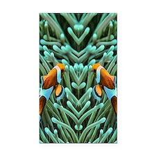 clownfish Rectangle Car Magnet
