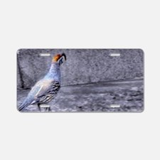 gambel quail Aluminum License Plate