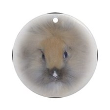Lionhead Bunny in Beige Round Ornament