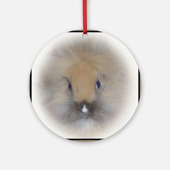 Lionhead Bunny in Beige Round Ornament
