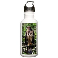 Young Eagle 10 x 14 Water Bottle