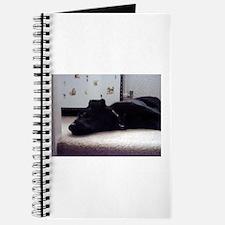 Sleeping Dog Journal