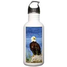 American Bald Eagle 10 Water Bottle
