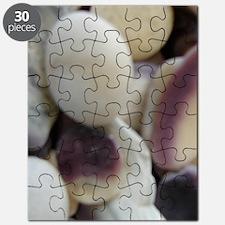 BEACH STONES  SHELLS™ Puzzle