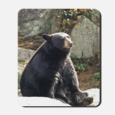 Black Bear Sitting Mousepad