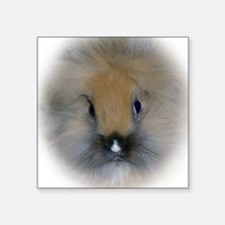 "Lionhead Bunny Square Sticker 3"" x 3"""
