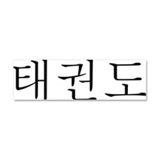 Taekwondo in Korean horizontal Car Magnet 10 x 3