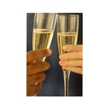Champagne Hands Rectangle Magnet