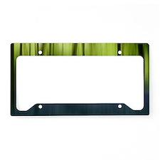spring woodlands License Plate Holder