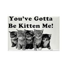 Gotta Be Kitten Me! Light Rectangle Magnet