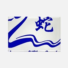 Year of Water Snake Rectangle Magnet