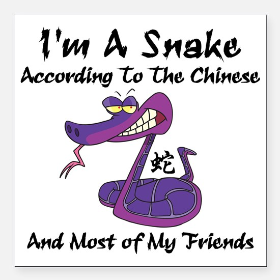 """Funny Year of Snake Square Car Magnet 3"""" x 3"""""""