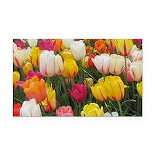 Spring Tulip Field Rectangle Car Magnet