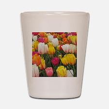 Spring Tulip Field Shot Glass