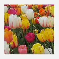 Spring Tulip Field Tile Coaster
