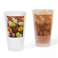 Spring Tulip Field Drinking Glass