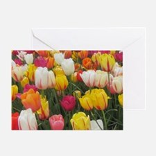 Spring Tulip Field Greeting Card