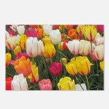 Spring Tulip Field Postcards (Package of 8)