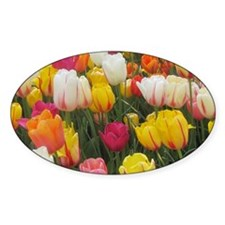 Spring Tulip Field Decal