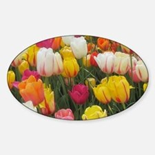 Spring Tulip Field Sticker (Oval)