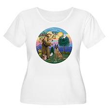 St Francis an T-Shirt