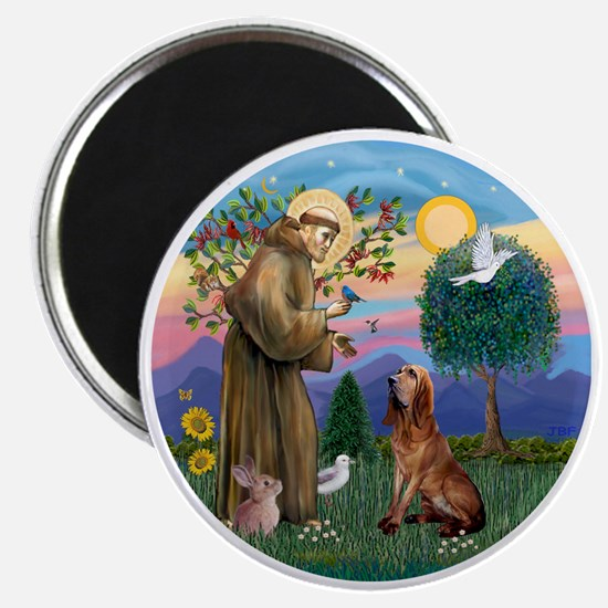St. Francis - Bloodhound Magnet